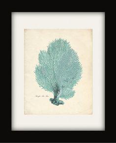 Vintage Sea Coral Print - Sea Fan in seafoam blue $14