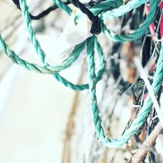 """45 Likes, 5 Comments - Noggin (@scratchyanoggin) on Instagram: """"