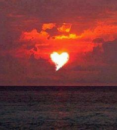 Liefde is..