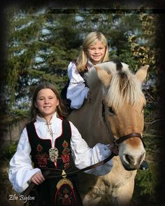 Odden's Norwegian Fjord Horses.    This picture was taken in the fall of 2006. Else enjoys taking pictures of kids in traditional costume along with the Norwegian Fjord horses.