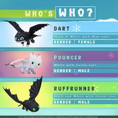 Httyd Nightlights genders and names comfirmed Httyd Dragons, Cute Dragons, Httyd 3, Dragon Names, Dragon Art, Desenhos Love, Dragon Rider, Night Fury, Nightlights