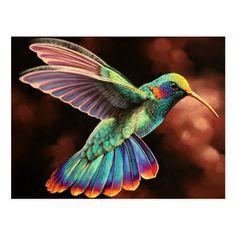 Pretty Birds, Love Birds, Beautiful Birds, Animals Beautiful, Cute Animals, Beautiful Things, Exotic Birds, Colorful Birds, Colorful Bird Tattoos