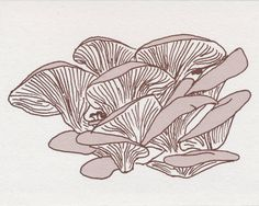 Hey, I found this really awesome Etsy listing at https://www.etsy.com/listing/95036283/recipe-note-card-oyster-mushroom
