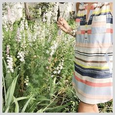 Mixed Stripe Tunic #Anthropologie #MyAnthroPhoto