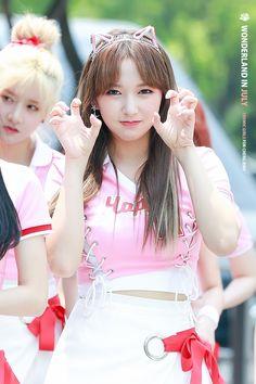 dedicated to female kpop idols. Korean Girl, Asian Girl, Cheng Xiao, Cheerleading Outfits, Pretty Asian, Cosmic Girls, Korean Celebrities, Kpop Girls, Beauty Women