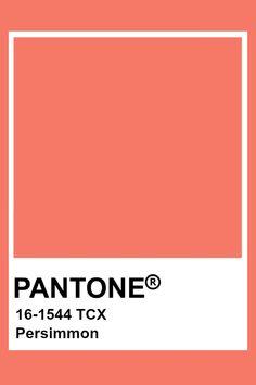 Pantone Persimmon Flat Color Palette, Colour Pallette, Colour Schemes, Color Combos, Pantone Tcx, Pantone Swatches, Color Swatches, Pantone Colour Palettes, Pantone Color