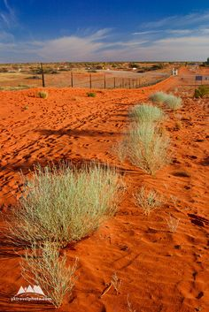 Cameron Corner, QLD, NSW, SA, Australia (729) - Yegor Korzh :: Travel Photography