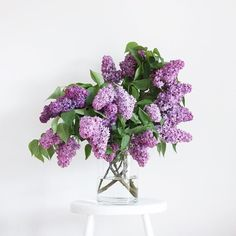 I had a huge lavender lilac bush outside my bedroom window .the fragrance is one I'll never forget. Lilac Flowers, My Flower, Fresh Flowers, Spring Flowers, Beautiful Flowers, Bouquet Flowers, No Rain, Decoration Design, Planting Flowers