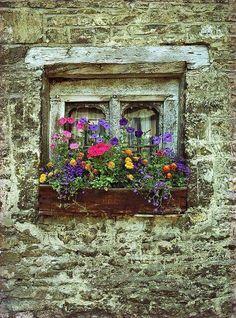 Ventana florida en casa de piedra