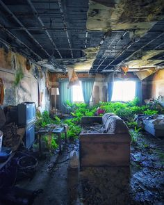 If these walls could talk, what would they tell us? We can guess: someone used t. - Vorname Nachname - Re-Wilding Post Apocalypse, Apocalypse Aesthetic, Abandoned Mansions, Abandoned Buildings, Abandoned Places, Post Apocalyptic City, Tumblr Rooms, Fantasy Landscape, End Of The World