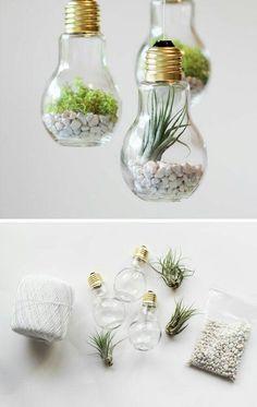 للنباتات