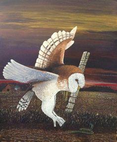 Barn Owl - Bob Newkirk - Algona, Iowa