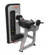 Inspiration Strength® Bilateral Arm Curl Model IP-S5309