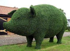 Topiary green garden art - that's a lot of pig! Topiary Garden, Topiary Trees, Green Garden, Lawn And Garden, Shade Garden, Chicken Wire Sculpture, Artificial Topiary, Pig Art, Cute Pigs