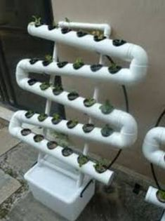 I need this for spinach, lettuce and herbs vertical garden. I need this for spinach, lettuce and herbs Hydroponics System, Hydroponic Gardening, Organic Gardening, Container Gardening, Gardening Tips, Aquaponics Diy, Hydroponic Tomatoes, Vertical Hydroponics, Gardening Websites