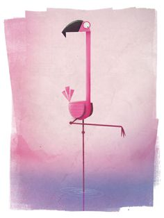 Birds - Simon Tibbs, Motion Graphic Designer
