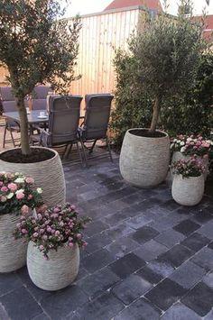 Bekijk de foto van AnneliesH met als titel mooi plaatje met de boompjes en de terrastegels en andere inspirerende plaatjes op Welke.nl.
