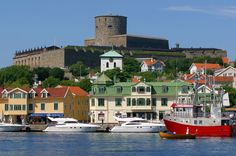 Discover four must see places in Sweden! From the capital of Stockholm, to the ICEHOTEL in the arctic circle to much much more! Native Country, Scandinavian Countries, Arctic Circle, Gothenburg, Out Of This World, Study Abroad, Continents, Norway, Travel Destinations