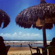Praia do futuro, Fortaleza, CE Patio, City, Places, Outdoor Decor, Flowers, Viajes, Brazil, Cute Pictures, Fortaleza
