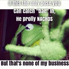 Kermit the Frog memes 21