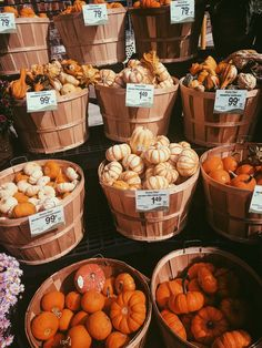 Sep 2019 - Nothing screams Autumn more than the humble Pumpkin. Carve shapes into them for halloween, add them into cooking recipes or just place a few on your kitchen table for that ultimate Autumnal decoration. Autumn Cozy, Autumn Fall, Fall Harvest, Vsco, Autumn Aesthetic, Cozy Aesthetic, Happy Fall Y'all, Happy Fun, Autumn Photography