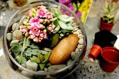 Simple DIY terrarium with succulents from Free People Terrarium Diy, Terrarium Centerpiece, Terrariums, Indoor Garden, Outdoor Gardens, Outdoor Life, Garden Hose, Boston Interiors, Free People Blog