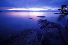 c-ddles:  Muted dawn 111231 F205 by PeteHuu on Flickr.
