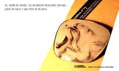Broche con Lente de Gafas Recicladas, de 7 de Bloomsbury
