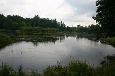białowieża   park narodowy