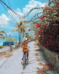 B A L I (@balidaily) • Instagram photos and videos Lombok, Bicycle, Motorcycle, Photo And Video, Vehicles, Instagram, Videos, Photos, Bike
