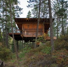 Modern Small Homes karo cabin, eco-friendly modern small house. future lake house for