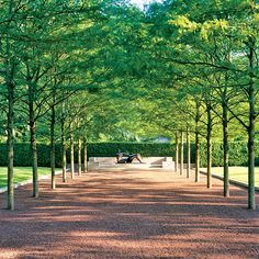 The late landscape architect Dan Kiley's grounds at Miller House and Garden, in Columbus, Indiana, are an example of early-modernist garden design. Using a pared-down palette, Kiley created outdoor spaces that perfectly complement the architecture of the residence designed by Eero Saarinen. Here, parallel-planted honey locust trees and simple crushed stone create a spare, modern allée leading to Henry Moore's Draped Reclining Woman. (The sculpture was removed during a renovation in 2008.)
