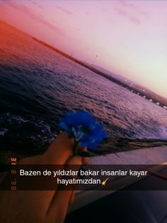 Fake Photo, Beautiful Words, Cool Words, Quotations, Love Quotes, Cool Designs, Sunset, Nice, Beach