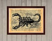Scorpion animal nature print Rustic decor Cabin Vintage Retro poster Dictionary page Home interior Wall 0023