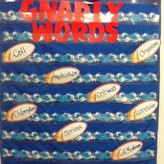 Vocabulary words for the week. Amanda's 5th grade science beach themed classroom.
