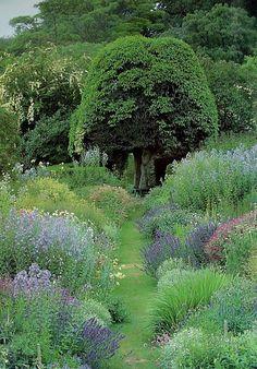 Path through garden borders