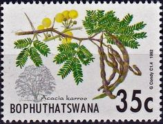 Acacia trees: Karroo , (South Africa, Homelands) . Bophuthatswana 1992 African Animals, African History, Acacia, Trees To Plant, South Africa, Flora, Birds, Postage Stamps, Community
