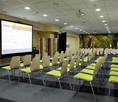 Conference hall Bjork  120 sqm