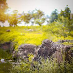 Athrava raut background - He Amit editing Dslr Blur Background, Background Wallpaper For Photoshop, Photo Background Images Hd, Blur Background Photography, Studio Background Images, Background Images For Editing, Picsart Background, The Help, Hd Backgrounds