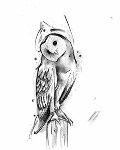 60 owl tattoo design ideas with watercolor, dotwork, and linework examples. Owl Tattoo Drawings, Bird Drawings, Tattoo Sketches, Drawing Sketches, Pencil Drawings, Owl Tattoo Design, Tattoo Designs Men, Tattoo Pencil, Lechuza Tattoo