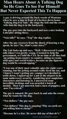 Man Hears About A Talking Dog So He Goes To See For Himself But Never Expected This To Happen funny dogs jokes story lol funny quote funny quotes funny sayings joke hilarious humor stories funny jokes