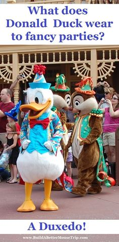 Silly Disney Joke - Q: What does Donald wear to a famous Hollywood party? A: A Duxedo   (Photo:  Afternoon Parade at the Magic Kingdom in Disney World)  To receive a list of 45 great #Disney World freebies see: http://www.buildabettermousetrip.com/disney-freebies/  #DisneyWorld