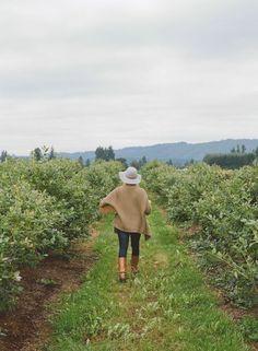grayskymorning: Kinfolk Saturdays | Picking Berries Kinfolk
