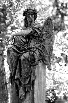 "Pierre the III ~ ""Angel Sitting Munich 1 P"""