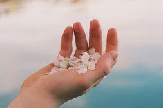 桜ネイルをしてお花見に出かけましょ上品でフェミニンな桜ネイルのデザインカタログ