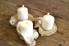 Inspiration Station: Oyster Shells Served 3 Ways - Paisley & Jade - Vintage & Specialty Rentals in Virginia, Washington, DC and North Carolina Oyster Shell Crafts, Oyster Shells, Sea Shells, Shell Centerpieces, Shell Decorations, Seashell Art, Seashell Crafts, Salt And Pepper Dishes, Kitchen Centerpiece