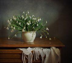 photo: Подснежники | photographer: Tatjana Weigand | WWW.PHOTODOM.COM