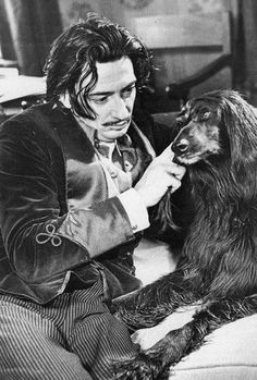 Salvador Dali with his Afghan hound. Salvador Dali Kunst, Afghan Hound, Whippet, Famous Artists, Dog Photos, Mans Best Friend, Pets, Annie Leibovitz, Black White