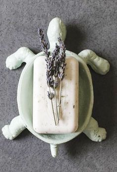 Turtle Soap Dish. Why don't i have this?!