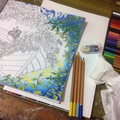 """Still.. #adultcoloring #coloring #coloringbook #addicted #thetimechamber… --> For the best coloring books and supplies including watercolors, colored pencils, gel pens and drawing markers, please visit http://ColoringToolkit.com. Color... Relax... Chill."